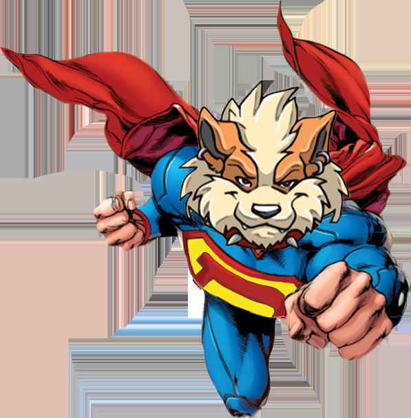 Superdoge Fly