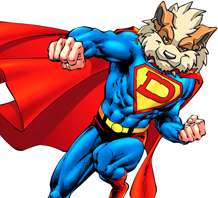 SuperDoge Punch