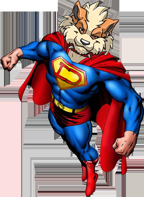SuperDoge Pose